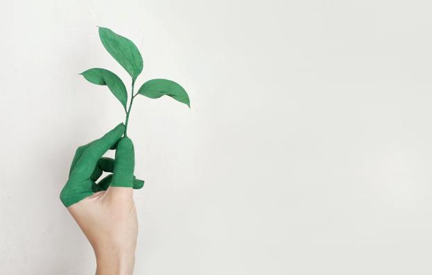 Натяжные потолки из ПВХ-пленки: насколько экологичен материал